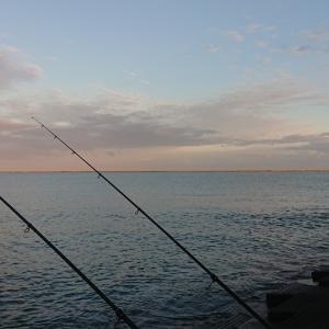 9/4 第50ラウンド 5:00~10:00  石狩湾新港花畔側 直線  投げ釣り  10度~21度 クロガシラ ハゼ