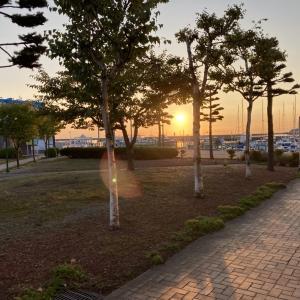 9/16 第51ラウンド 6:00~12:00  船釣り 小樽沖 アブラコ ガヤ  10度~20度