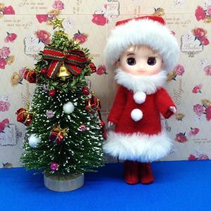 クリスマスとニューフェイス