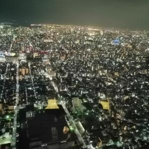 東京の空で