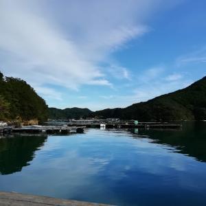 南伊勢町方座浦の大チヌポイント(釣り場紹介)