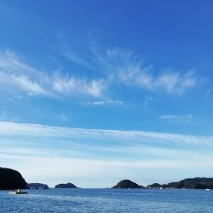 平日は中津浜浦で筏釣り