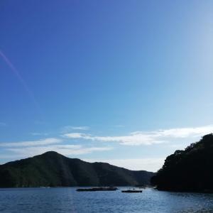 2020/10/14南伊勢町方座浦へ(釣行記)