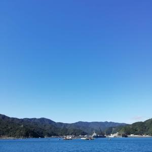 2020/11/26南伊勢町神前浦へ(釣行記)