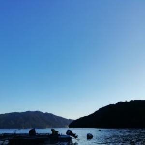 平日は尾鷲賀田湾でカセ釣り