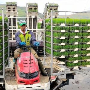 【豪雨水害から奇跡の復活!】古屋農園の田植え始まる