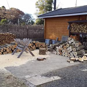 輪切り薪は一年乾燥でも良く燃える?