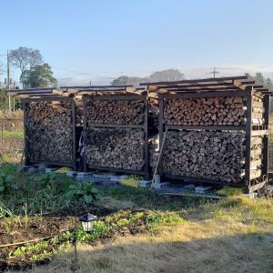 二夏越しの樫薪の乾燥具合は