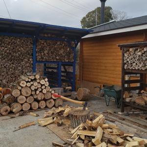 河川敷の無料原木割り終了