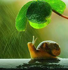 雨の日に♡