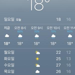 今日の韓国ソウルは最高気温が…