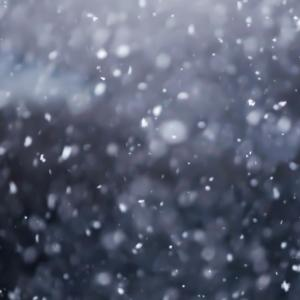 雪組壬生義士伝 舞台化されなかった原作エピソード、 細かすぎて伝わらない伏線