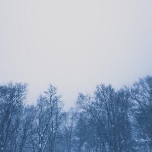 博多座公演「黒い瞳」「VIVA FESTA in Hakata」Lv感想