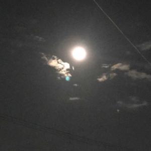 中秋の名月🌕
