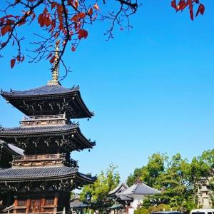貝塚市ってこんな所です 水間寺