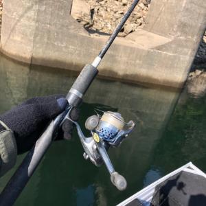 先日の釣行♪ 善良な釣り人代表です