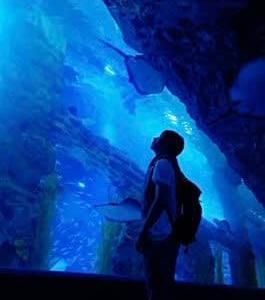 ユノは水族館 日本ではCREA発売