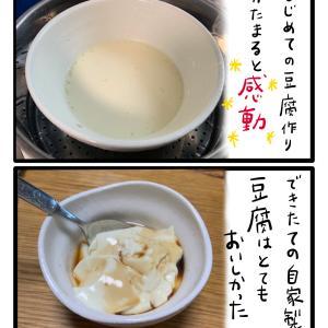 自家製豆腐と海のめぐみ
