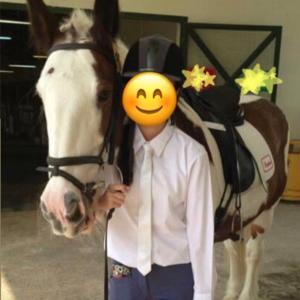 乗馬、馬術にどっぷりな姪。