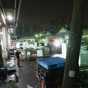 築地市場最後の朝・・・~築地を知らない私がする築地の話~