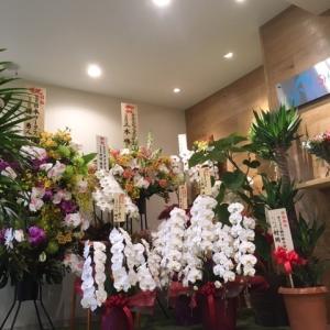 事務所が移転いたしました話~たくさんのお花を有難うございます(^^)/~