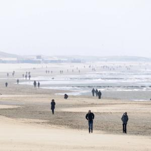 新型コロナ*オランダと日本の対応