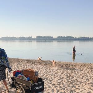 夏でも涼しい!早朝ビーチ