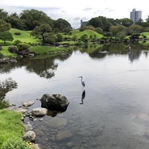 水前寺成趣園と出水神社
