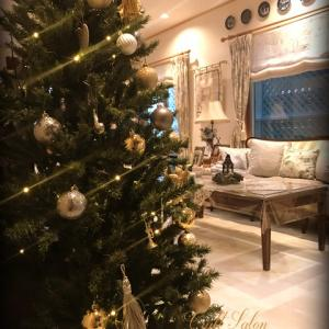 クリスマスツリーを出しました☆おとな色のツリーです☆