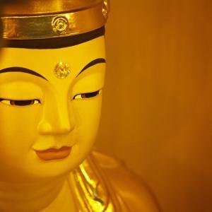 【「自在力」読書会ファイナル】自らの内に「菩薩」の存在を観る。