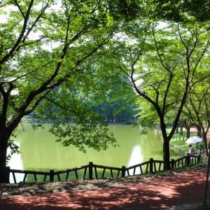 公園の池。