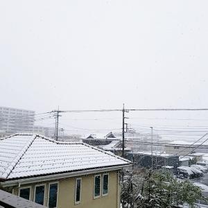 雪の日の外出自粛で感じること☆