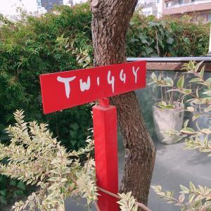 Twiggy松浦美穂さんとの縁をつないでくれたのは