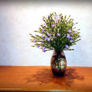 【6ヶ月サポート】造花を飾る人の深層心理