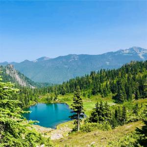 2018 オリンピック国立公園とカートコバーンの旅 (10)