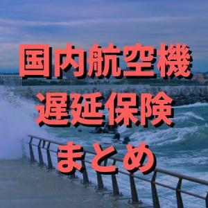 欠航などに備えて 国内航空機遅延保険まとめ(2019年6月)