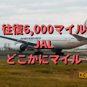 往復6,000マイルで「どこかに」旅に出よう JALどこかにマイル
