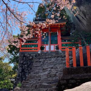 春。熊野三山への旅①