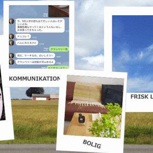 介護ヘルパー学校:デンマーク語の授業