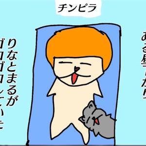ねこ4コマ【チンピラ】