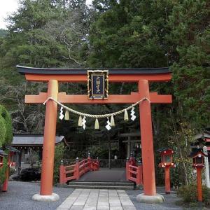 初詣客が少ないと(思う)神社