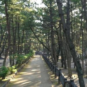 兵庫県の歩きやすそうな散歩道