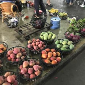 台湾のマンゴーの聖地「玉井」の市場でマンゴー尽くし!「台湾留学652日目」