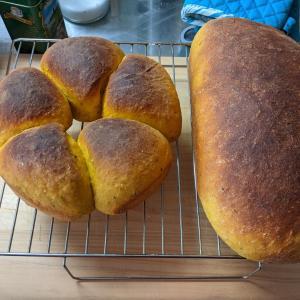 Pumpkin bread - Alex
