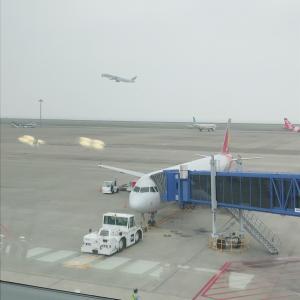 ★7月 韓国旅行★ アシアナ航空の機内食 & 座席は通路派?窓側派?