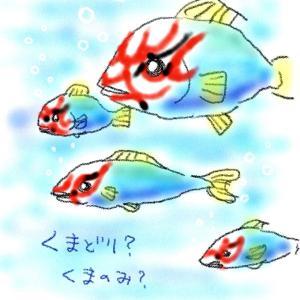 隈取りのある魚。