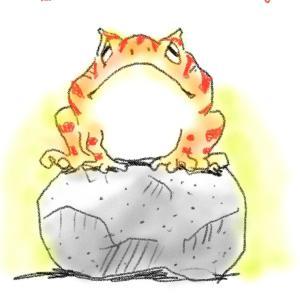 豚に真珠。カエルに石。