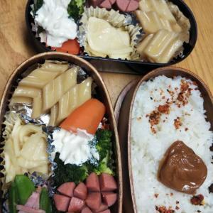 たーちゃんのお弁当  ➕  α