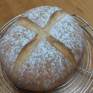 ビースト パン