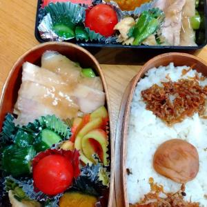 たーちゃんのお弁当 +  α